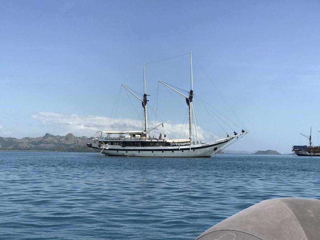 148 Schiff (M)