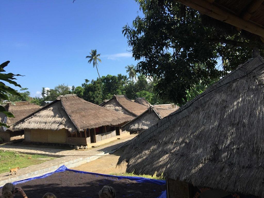 277 Lombok (D E)